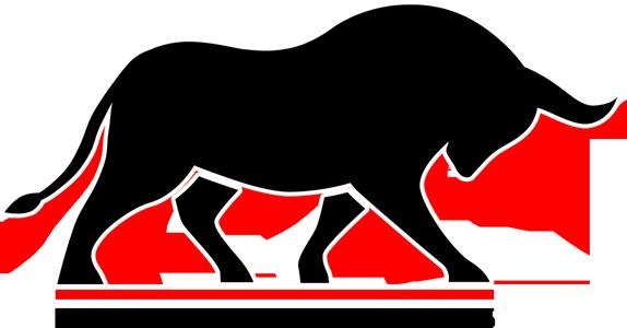 Black Bull Builders